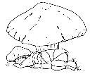 gnomo-dorme