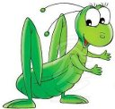 grasshopper-normal