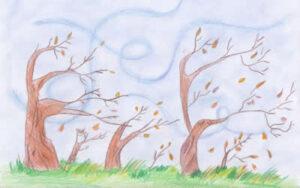 vento-sugli-alberi