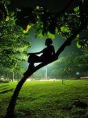 narcisi-e-solitudine