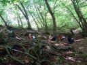 teatranti nel bosco